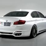 BMW-F10-wald-1