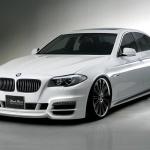 BMW-F10-wald-2